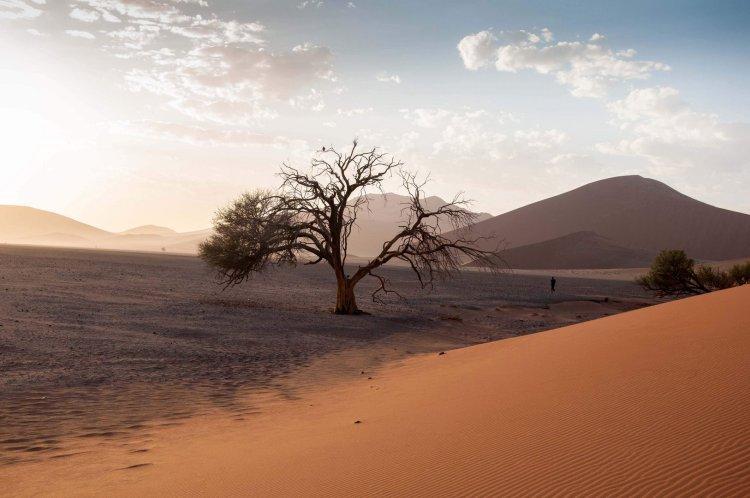 lourymage - dunes
