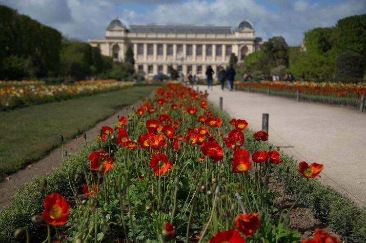 Lourymage - Jardin des plantes