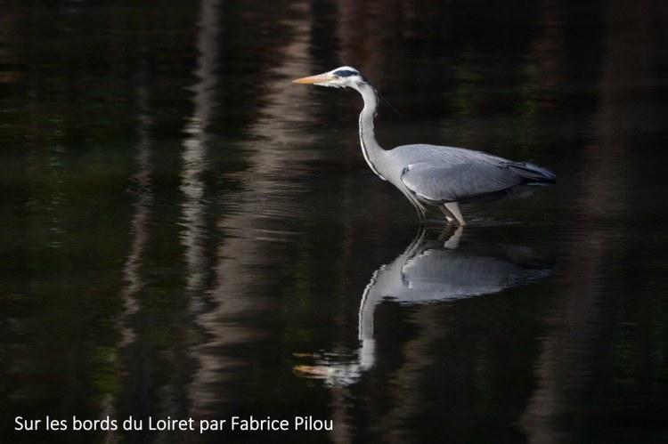 Lourymage - Sur les bords du Loiret